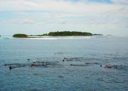 snorkeling alle Maldive con Macana