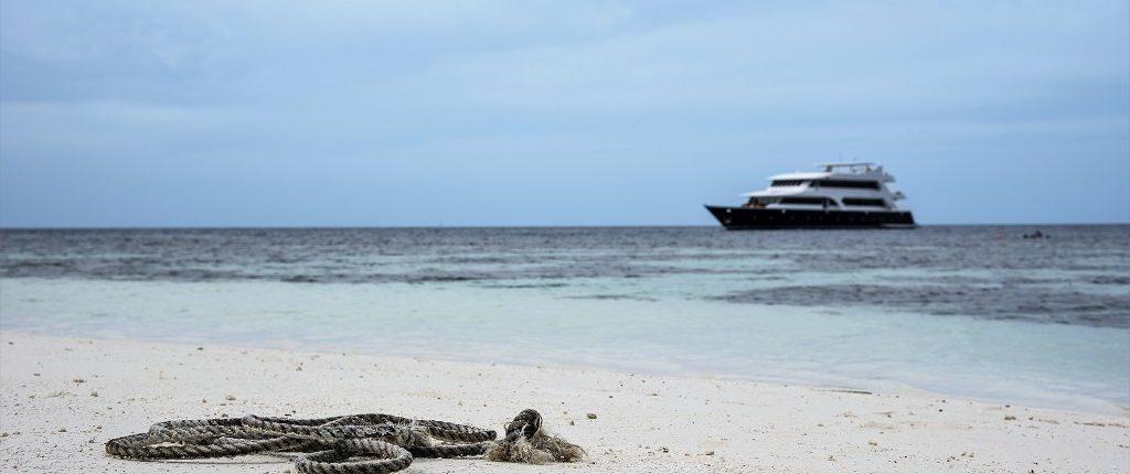 crociere alle Maldive con Macana