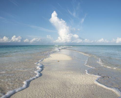 Maldive spiagge