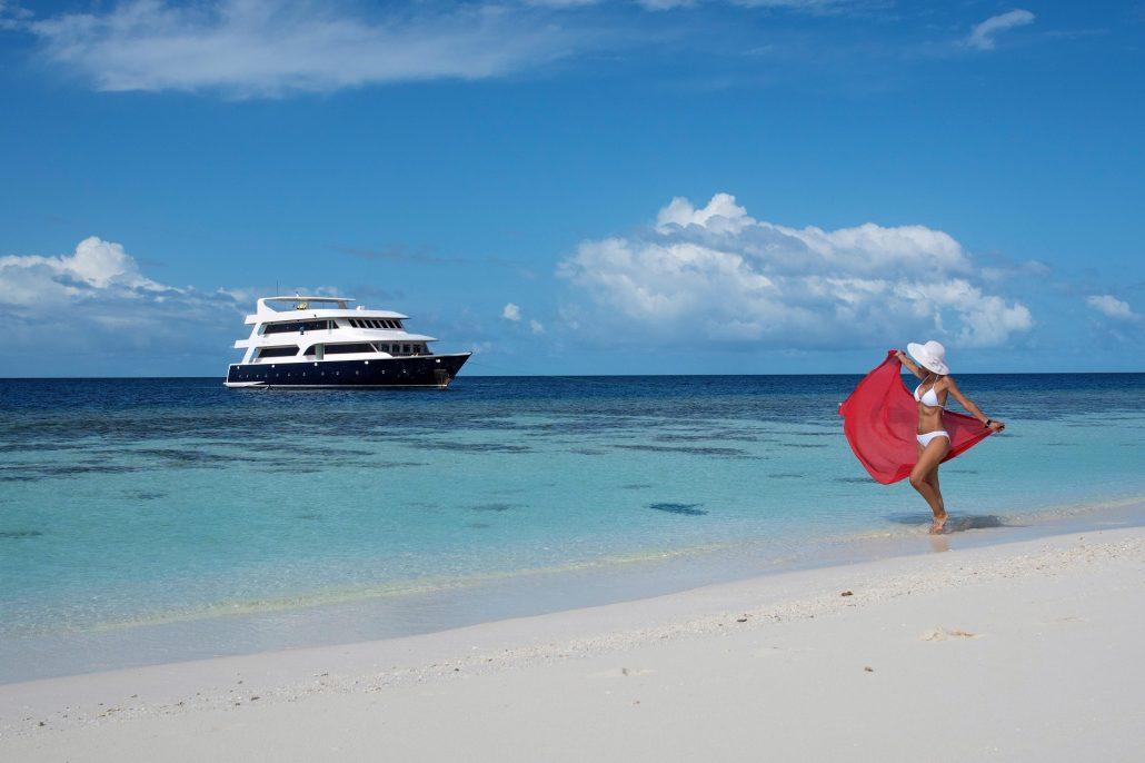 Crociere alle Maldive immersioni snorkeling escursioni - Diving tour ...